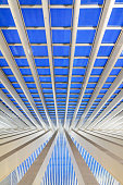 Liege, Belgium - December 12, 2014: Beautiful abstract view of the interior of the modern architecture railway station Liege-Guillemins by Calatrava with steel shapes and lines in the blue hour in Belgium, on December 12, 2014