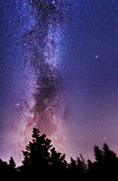 Vertical Milky Way - foto de acervo