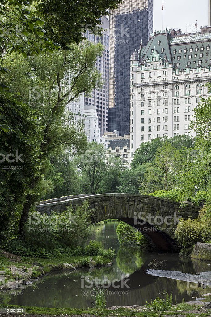 Vertical picture of Gapstow bridge at Central Park stock photo