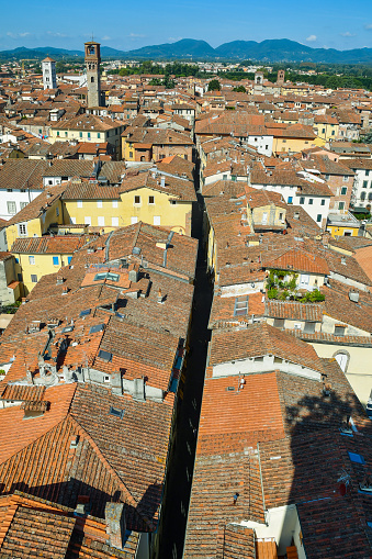 istock Vertical rooftop city view of the medieval town of Lucca from the Guinigi Tower with the narrow alley of Via Sant'Andrea and the Torre delle Ore (Tower of the Hours) in a sunny summer day, Tuscany, Italy 1187094429