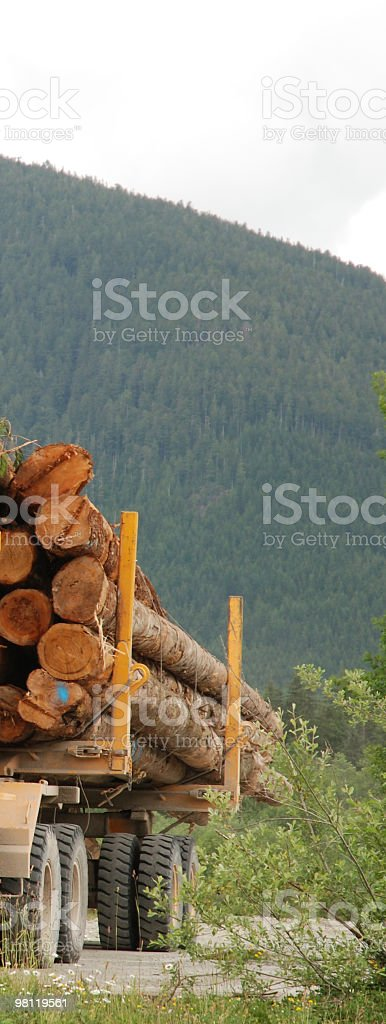 Vertical Shot of Logs on Logging Truck royalty-free stock photo