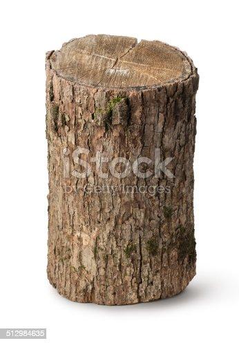 istock Vertical stump 512984635