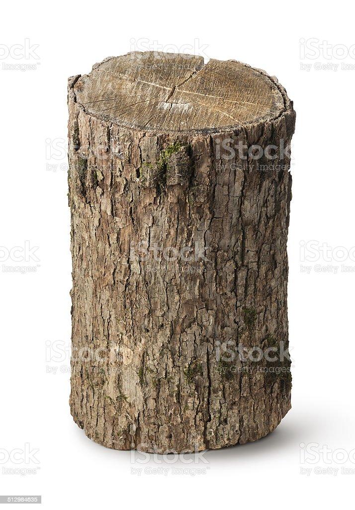 Vertical stump stock photo