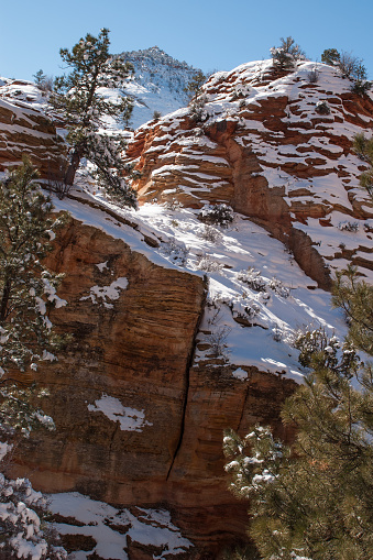 Winter in Zion National Park Photograph by James Udall