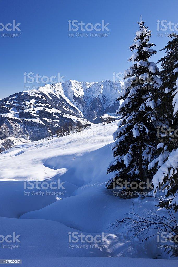 Vertical Winter Landscape in Swiss Alps stock photo