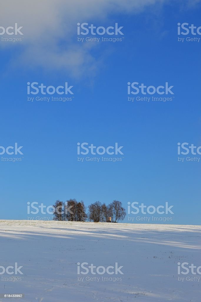 Vertical winter landscape stock photo