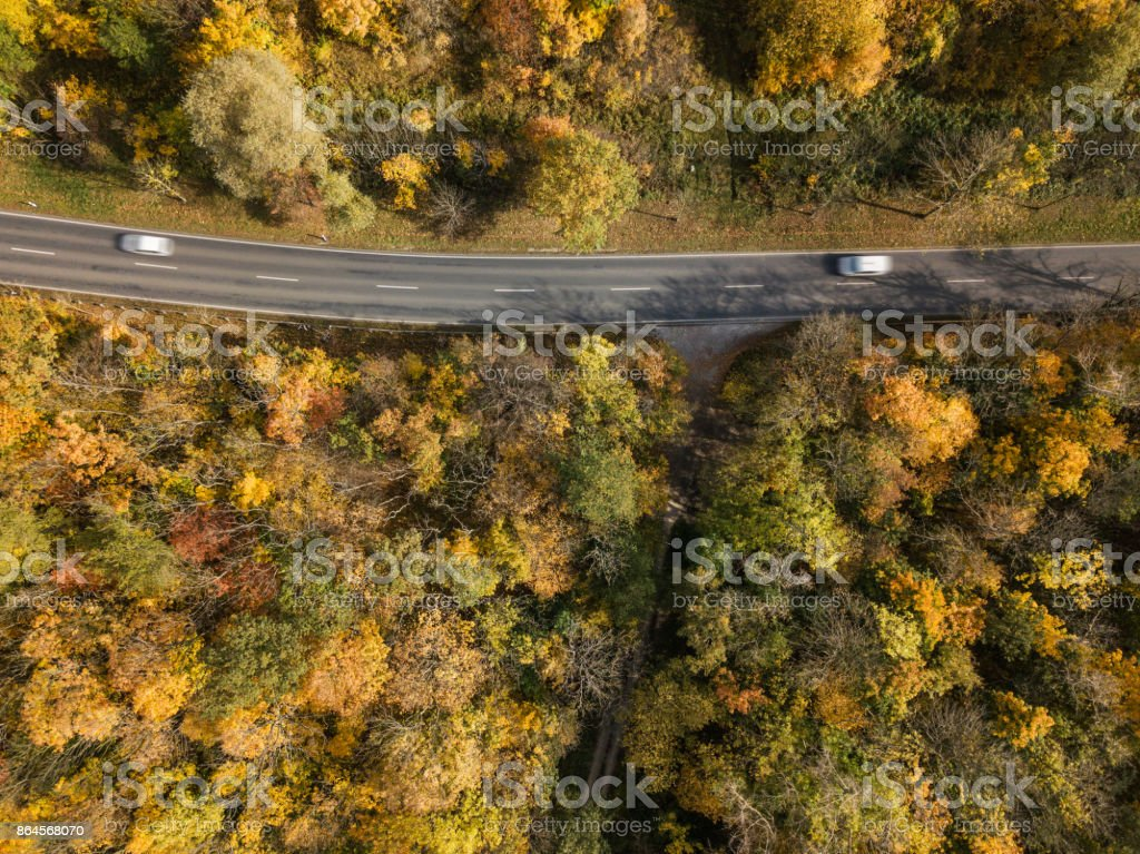 Vertikal view of street in autumn forest, Germany stock photo