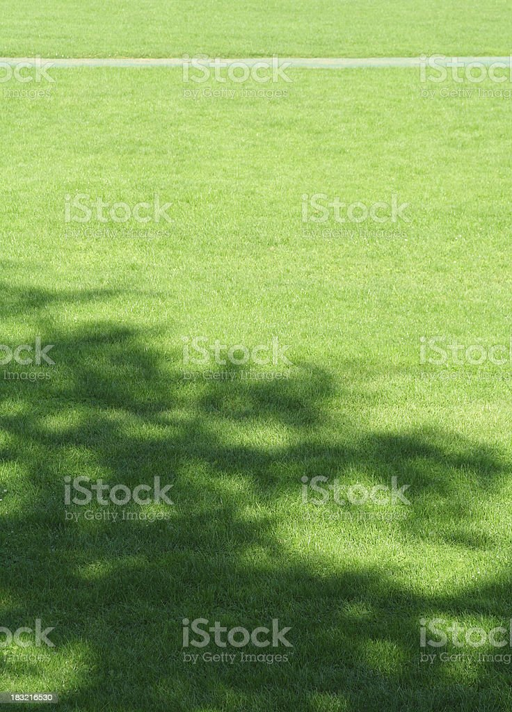 Very Big Green School Sports Field Lawn with Tree Shadow royalty-free stock photo
