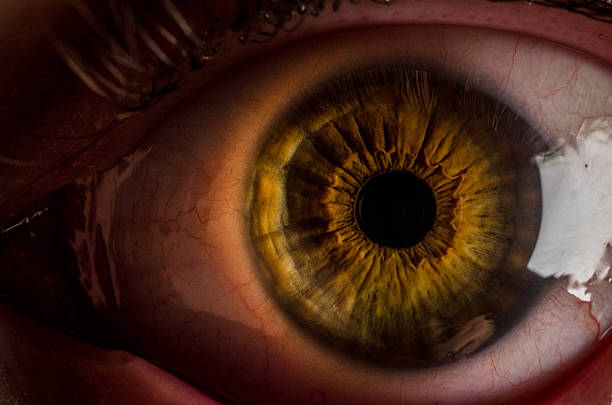 very close up shot of a human brown eye stock photo