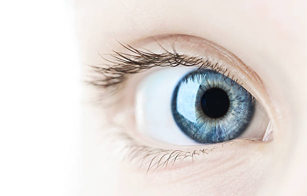 Auge Nahaufnahme – Foto