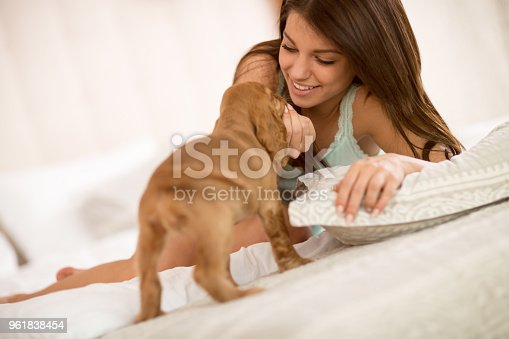 Very cute small dog cuddles with young female owner
