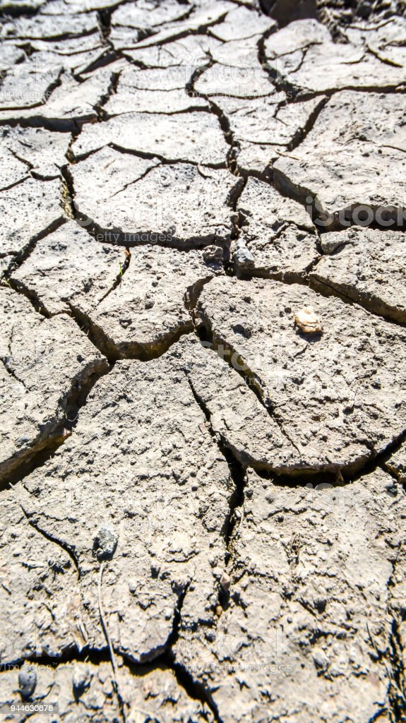 Drought leads to famine