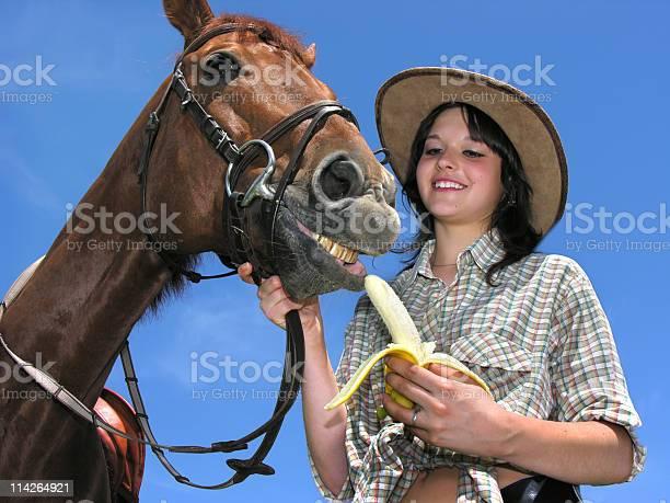 Very happy horse picture id114264921?b=1&k=6&m=114264921&s=612x612&h=a3idfz eskrceiloy7i sc8tx5 0305tgvo lyrdrni=