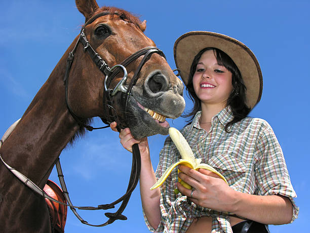 Very happy horse picture id114264921?b=1&k=6&m=114264921&s=612x612&w=0&h=nlztex8cva49qmtt7zerurmyidn1nnjc1nj 08uwabc=