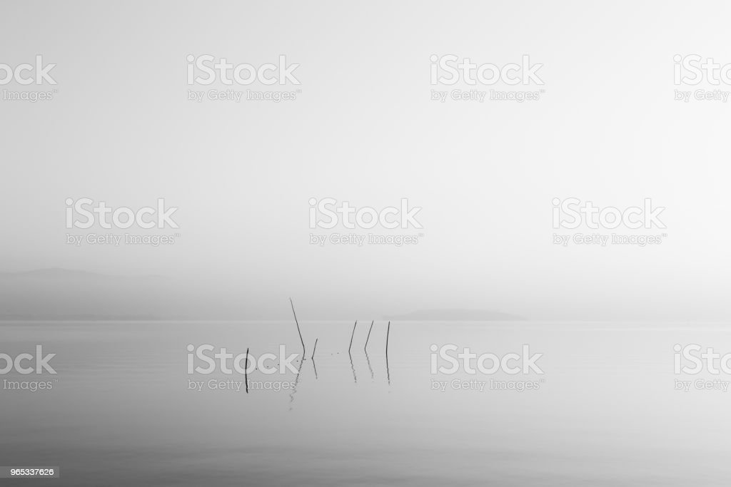 A very minimalistic view of a lake at dawn, with soft light and zbiór zdjęć royalty-free
