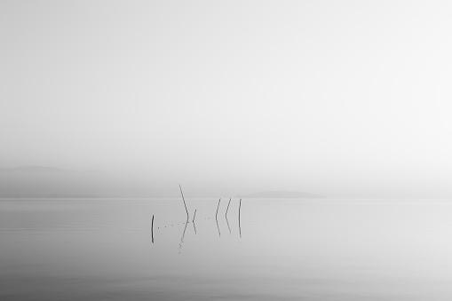 부드러운 빛 새벽 호수 매우 최소한의 보기 및 0명에 대한 스톡 사진 및 기타 이미지