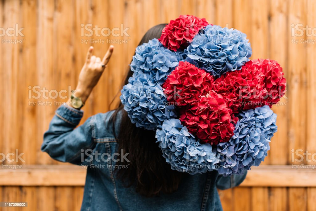 Very Nice Young Woman Holding Huge Beautiful Blossoming Blue And Red Hydrangea Flowers Bouquet On Rustic Wooden Wall Background Stock Photo Download Image Now Istock