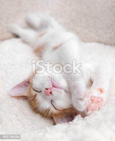 istock Very sleepy cute little kitten upside down in a basket 943198350