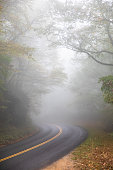 Beautiful scenic thick fog covering a curved mountain highway road in the mountains of Blue Ridge Parkway. Foggy Bright Day. Mysterious.
