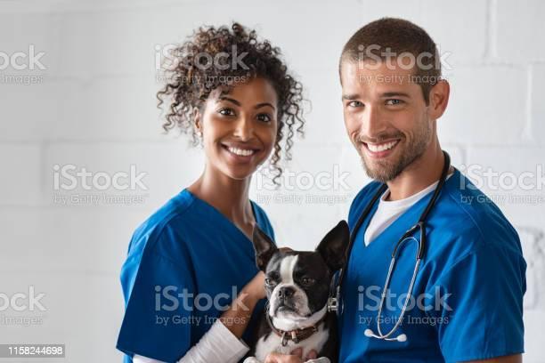 Vet and nurse holding cute dog picture id1158244698?b=1&k=6&m=1158244698&s=612x612&h=r bhg5o5x89bzzfnkw5hniepo0p3d28npnwrxmjzntm=