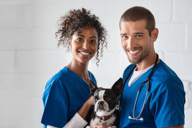 Vet and nurse holding cute dog picture id1158244698?b=1&k=6&m=1158244698&s=612x612&w=0&h=hxevpfgdmhelhmnyqoy tekxlil2afkugvlladgpxgq=