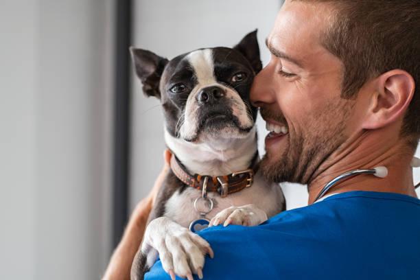 perro mascota de abrazo veterinario - veterinario fotografías e imágenes de stock