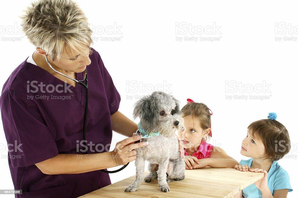 Vet, Dog And Children royalty-free stock photo