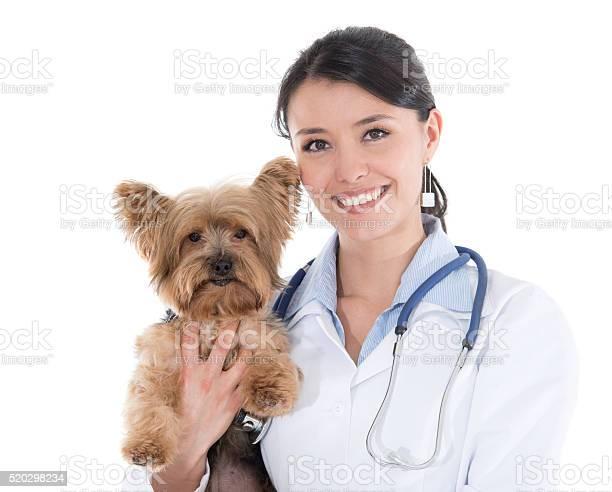 Vet holding a little dog picture id520298234?b=1&k=6&m=520298234&s=612x612&h=p8jhgdtwc spidfwrxekusaqzh7n3j6p3bxyshhkhcs=