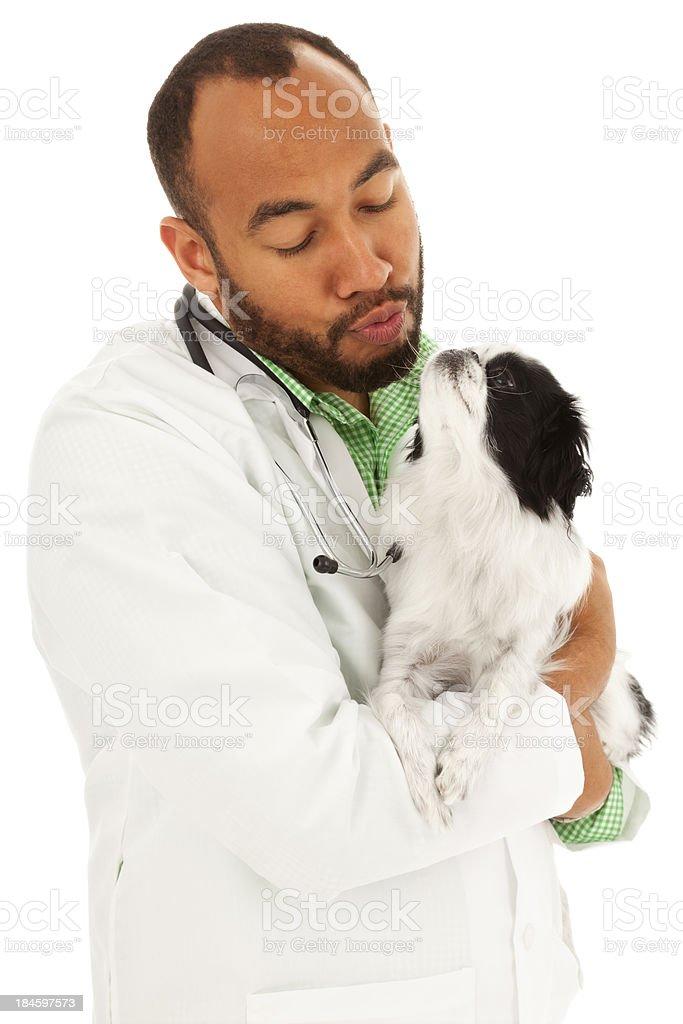Vet Kissing Pup stock photo