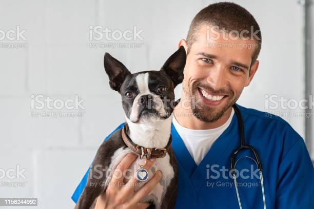 Vet with boston terrier picture id1158244992?b=1&k=6&m=1158244992&s=612x612&h=bpb8voz1mrxxkbgi tgk5feb6vvo8sicl7suc7snd 4=