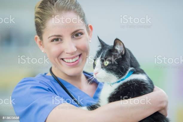 Vet with cat picture id813823538?b=1&k=6&m=813823538&s=612x612&h=jprghbinvn0z4fofanrf ddkvvdwshhwoyti6bsrg2u=
