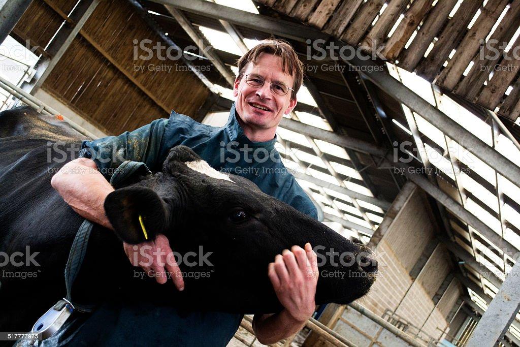 Vet with cow stock photo