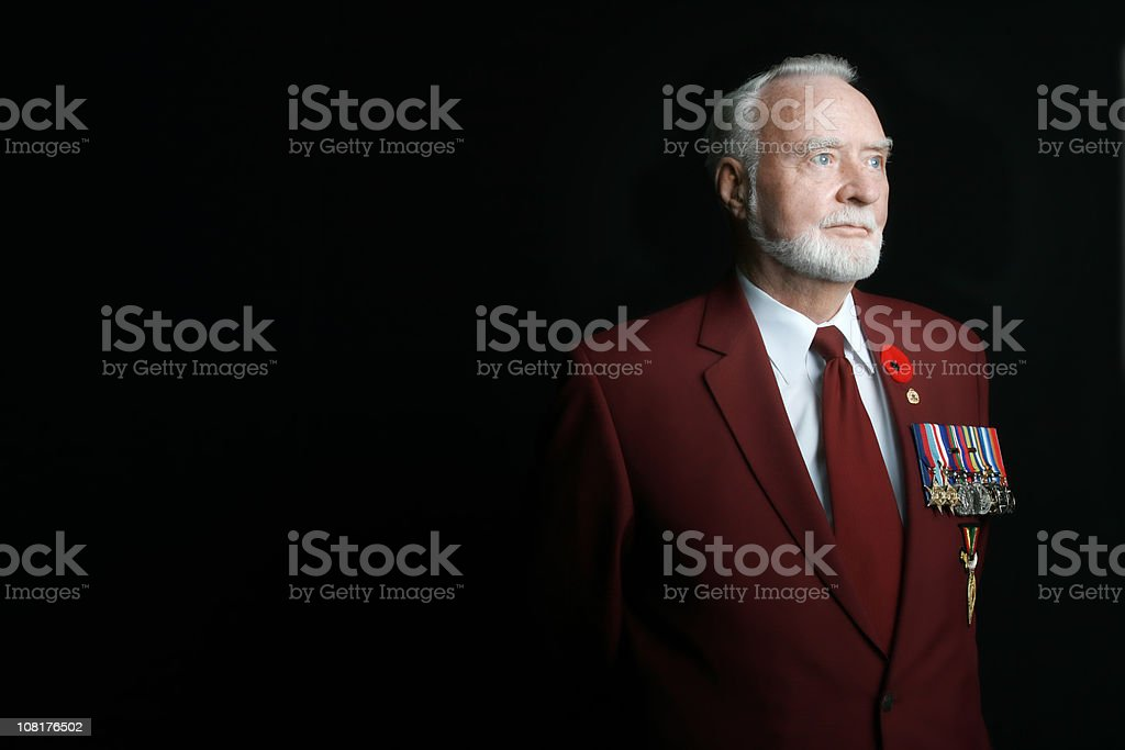 WWII Veteran royalty-free stock photo