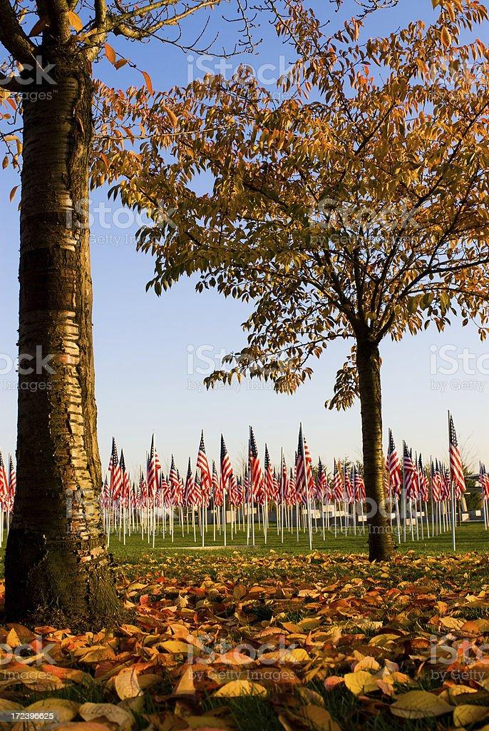 Veteran's Day Memorial royalty-free stock photo