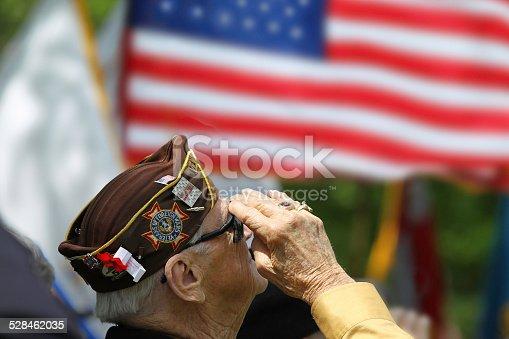 istock Veterans Saluting 528462035