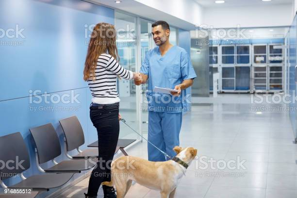 Veterinarian and dog owner shaking hands in clinic picture id916855512?b=1&k=6&m=916855512&s=612x612&h=i5l1ulauqyujggljxg0wtlg39zqtnzm8t7nu3uxlfyq=