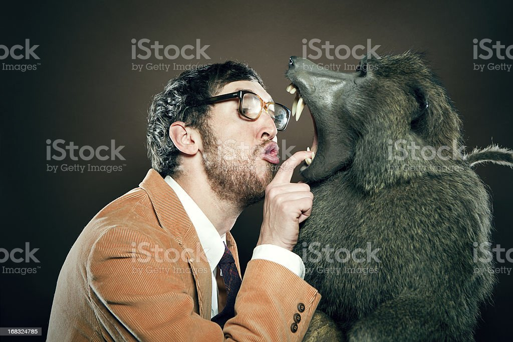 Veterinarian Checks Baboons Teeth A vet dentist looks into the mouth of an ape with sharp teeth, the baboon opening his mouth wide.  Vertical with copy space.  Man is wearing a corduroy blazer, tie, and thick glasses.  Horizontal with copy space. Animal Stock Photo
