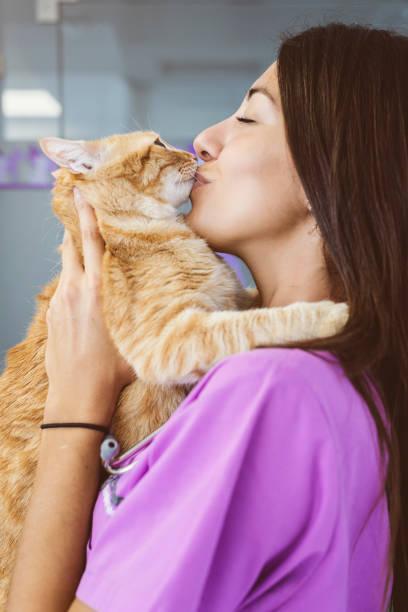 Veterinarian doctor kissing a little cat picture id811620650?b=1&k=6&m=811620650&s=612x612&w=0&h=a6 0tf3mgtaasevt94bcaivqjdw7ta9zkxulcrwu ne=