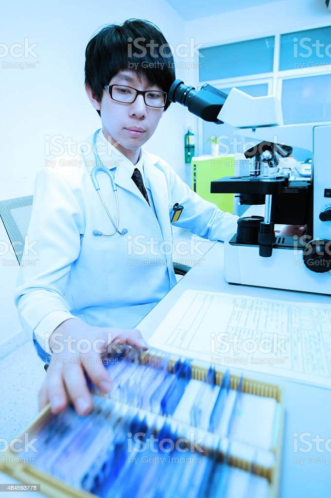 veterinarian doctor working at the laboratory stock photo
