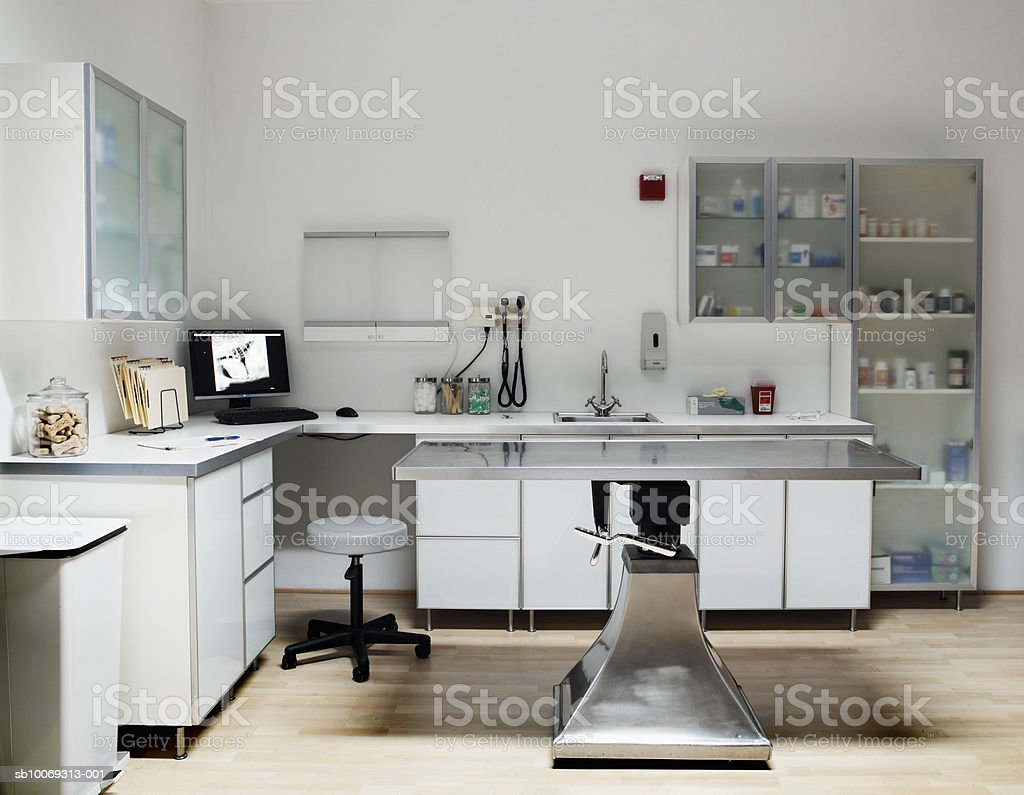 Veterinarian examination room, digital xray on monitor screen foto de stock royalty-free