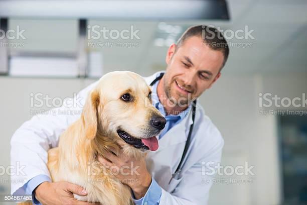 Veterinarian examining a dog picture id504567453?b=1&k=6&m=504567453&s=612x612&h=bi6tyapudxmwc0l czocf8jqq r6x9vzq27wnahtntu=