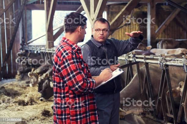 Veterinarian helping farmer with his livestock picture id1134885056?b=1&k=6&m=1134885056&s=612x612&h= 1avolkyxxtwbkzf058kbmwpgztfezewwc0wu4naxv8=