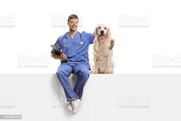 Veterinarian in a blue uniform sitting on a white panel and hugging a picture id1154032752?b=1&k=6&m=1154032752&s=612x612&h= twdqbwhbd8t x0kj1jwyscrrxhzipgpsnvqmatg5vc=