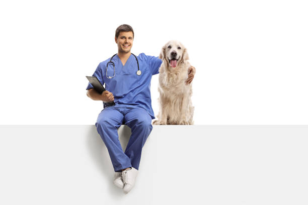 Veterinarian in a blue uniform sitting on a white panel and hugging a picture id1154032752?b=1&k=6&m=1154032752&s=612x612&w=0&h=jco5zvbaretdxib f 1yr1jgdjhjamrar ma6sy7mau=
