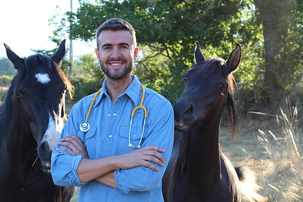 Veterinarian standing beside horses at ranch picture id604364236?b=1&k=6&m=604364236&s=612x612&w=0&h=a2agzut1zxanlrodx3rgfbl2ljvw1sh7q57z8tmfxts=
