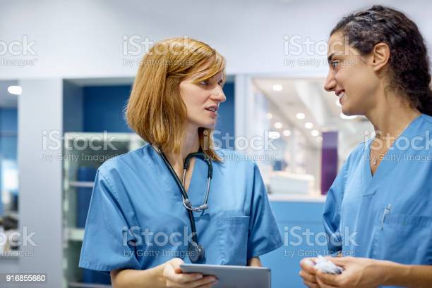 Veterinarian talking with colleague in hospital picture id916855660?b=1&k=6&m=916855660&s=612x612&h=lbtvrrcb02r3bswksw6by2cxin6qgkmf  xlus1inz4=