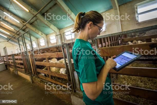 Veterinarian using digital tablet picture id937254042?b=1&k=6&m=937254042&s=612x612&h=jt0lkl7iuyu5wajvc66lgnllhlhhfeikpo0hoiexrvq=