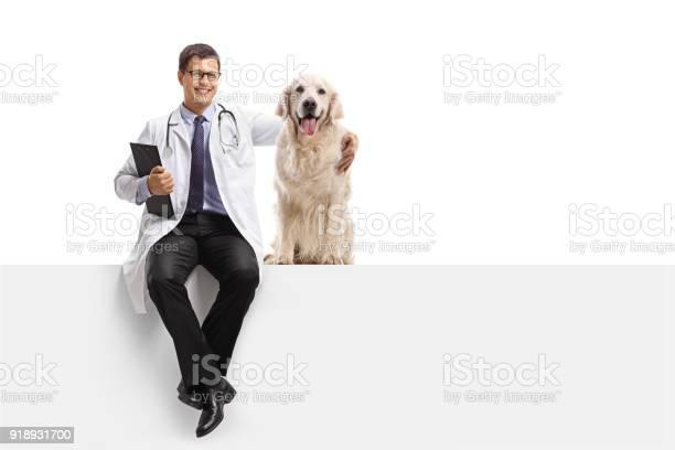 Veterinarian with a labrador retriever dog sitting on a panel picture id918931700?b=1&k=6&m=918931700&s=612x612&h=8fy135060xh6edtnzu3yntvxgnc riqcq6nwufdi3qg=