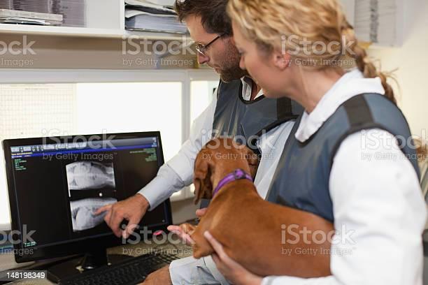 Veterinarians examining xrays in office picture id148198349?b=1&k=6&m=148198349&s=612x612&h=inbtv2gkdl i4bzeo3yifvrqyarxanj bqq i 3bvvm=