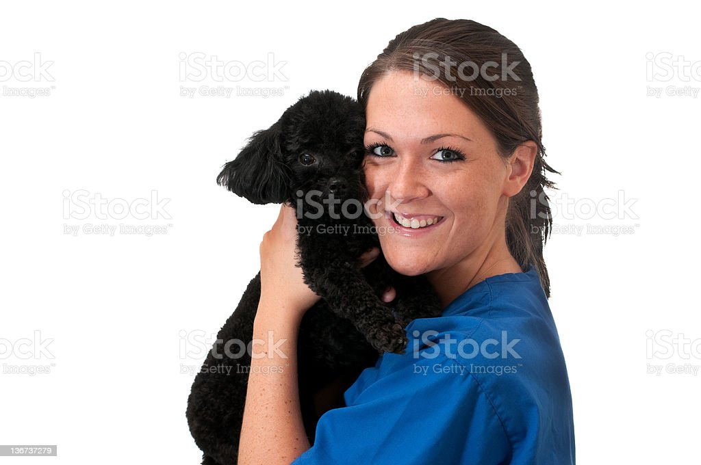 Veterinary Assistant with Pet Dog Isolated stock photo